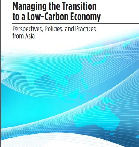 Managing Transition to a Low Carbon Economy